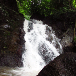 Adyar Waterfalls, Mangalore - AroundMangalore.com