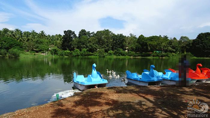 Pilikula 8 - Pilikula Nisargadhama