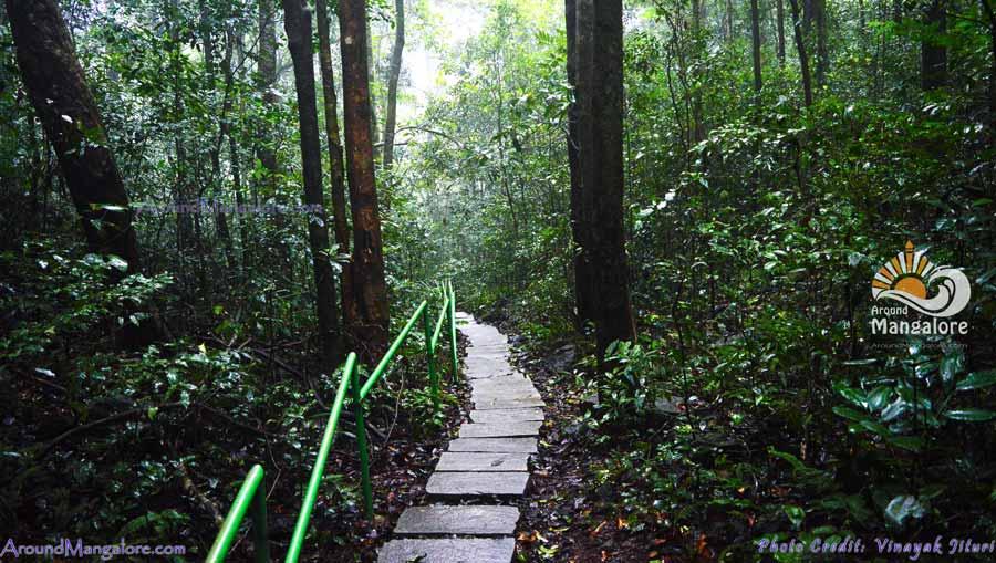 Jogigundi Falls, Agumbe, Karnataka - Around Mangalore - AroundMangalore.com