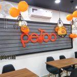 Petoo – Attavar