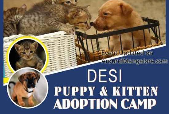 Desi Puppy & Kitten Adoption Camp - 26 May 2019 - DM Mangala Jyothi Integrated School, Vamanjoor, Mangalore