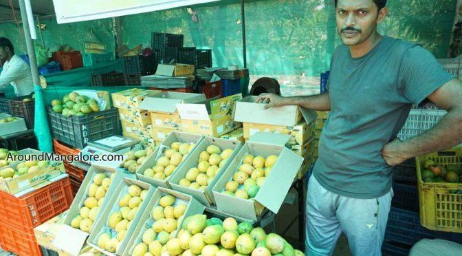 Mango Festival 2019 - Kadri Park Mangalore
