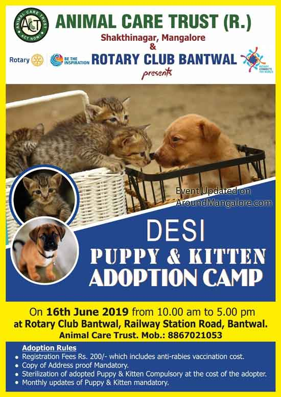 Desi Puppy & Kitten Adoption Camp - 16 Jun 2019 - Rotary Club Bantwal, Mangalore