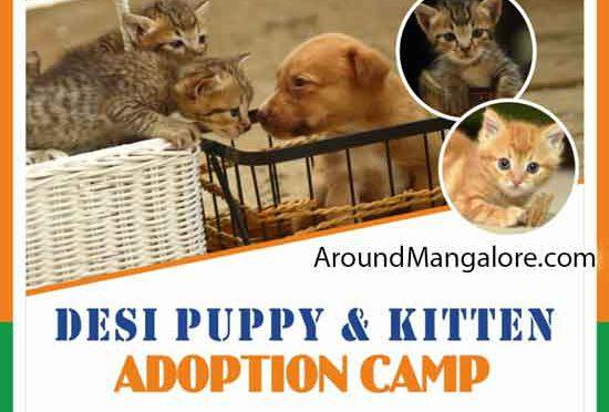 Desi Puppy & Kitten Adoption Camp - 15 Aug 2019 - Animal Care Trust - Forum Fiza Mall, Mangalore