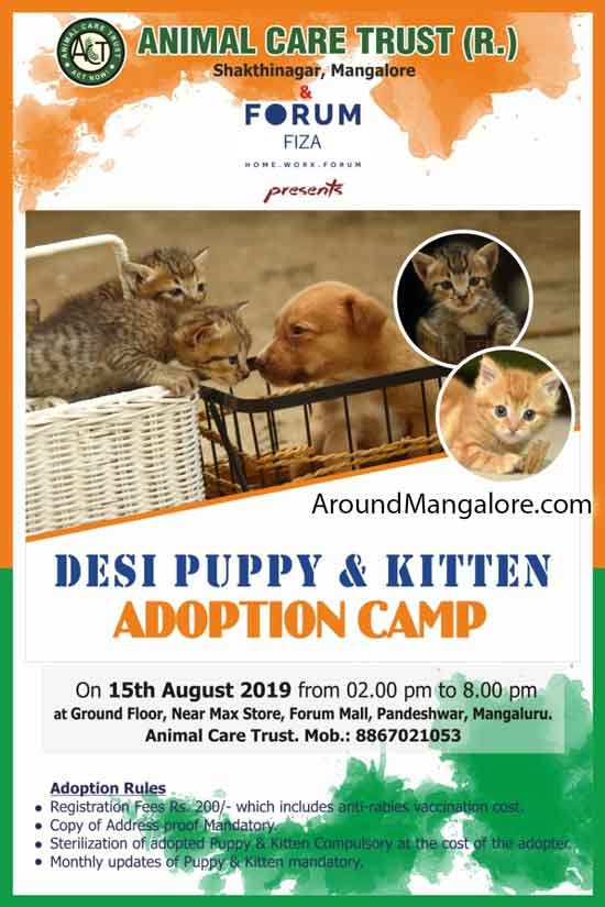 Desi Puppy & Kitten Adoption Camp - 15 Aug 2019 - Animal Care Trust - Forum Fiza Mall, Mangalore