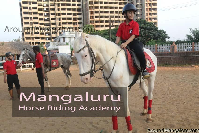 Mangaluru Horse Riding Academy – Kadri