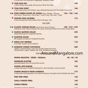 TCW Food menu 3 300x300 - The Curry Wok - KS Rao Road, Hampankatta, Mangalore